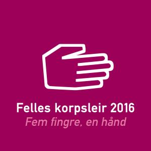 leirmerke 2016
